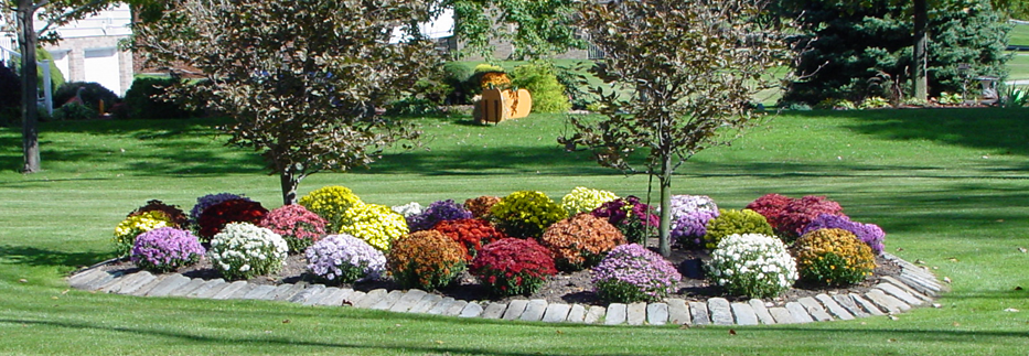 Landscape design long island for Landscape design services